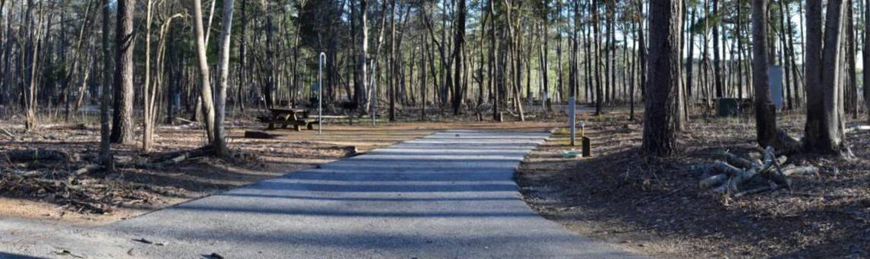 Fox Loop Site 28Fox Loop Site 28, March 6, 2020
