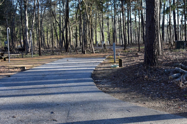Fox Loop Site 28-1Fox Loop Site 28, March 6, 2020