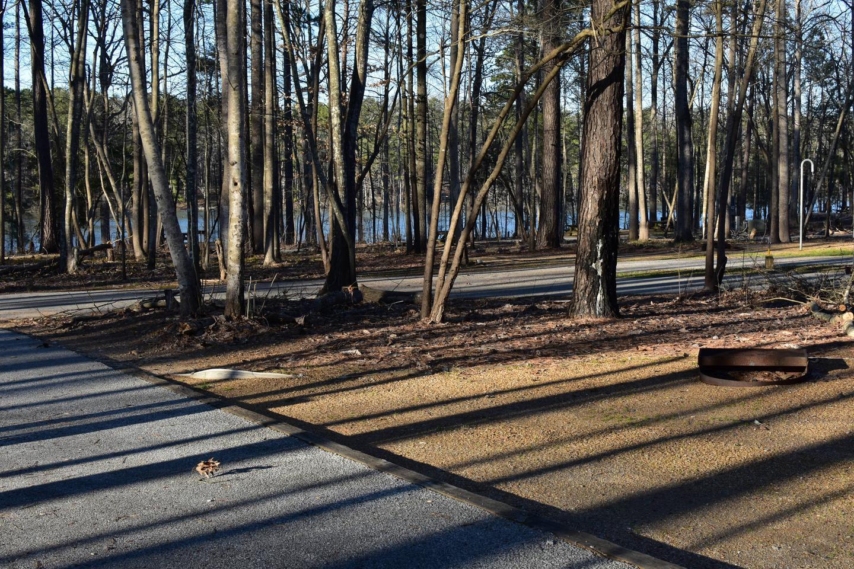 Fox Loop Site 28-4Fox Loop Site 28, March 6, 2020