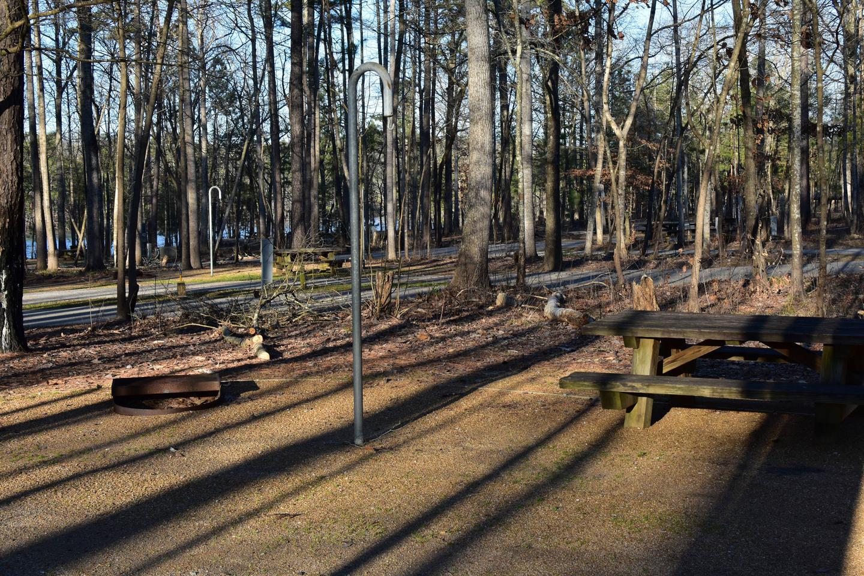 Fox Loop Site 28-5Fox Loop Site 28, March 6, 2020