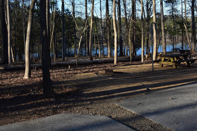 Fox Loop Site 29Fox Loop Site 29, March 6, 2020