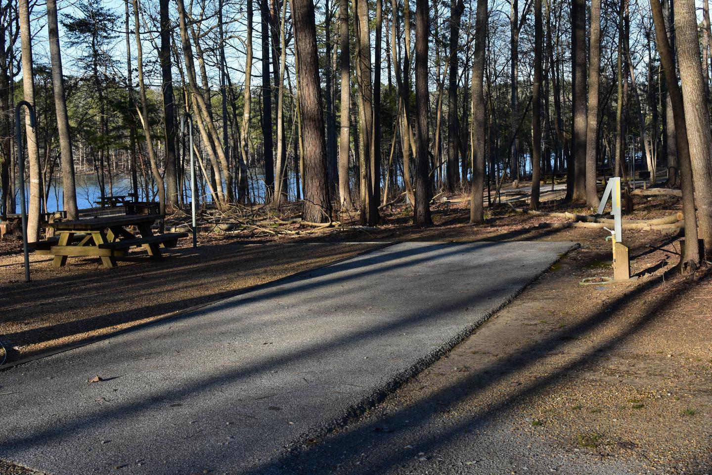 Fox Loop Site 29-1Fox Loop Site 29, March 6, 2020