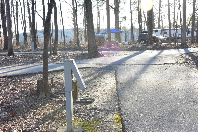 Fox Loop Site 29-3Fox Loop Site 29, March 6, 2020