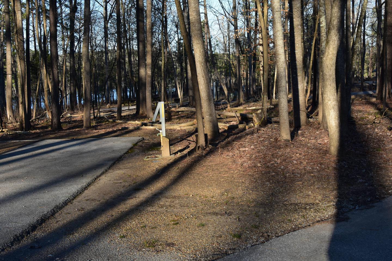 Fox Loop Site 29-2Fox Loop Site 29, March 6, 2020