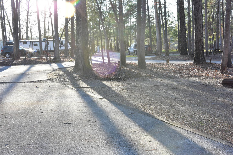 Fox Loop Site 29-4Fox Loop Site 29, March 6, 2020