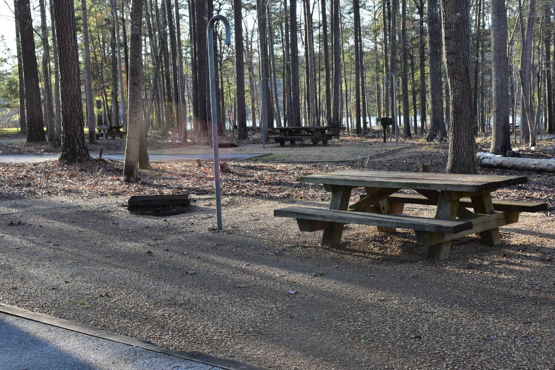 Fox Loop Site 29-5Fox Loop Site 29, March 6, 2020