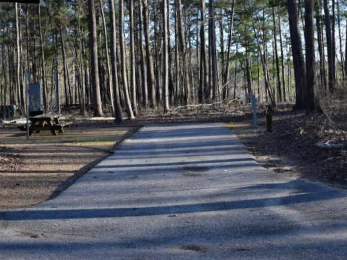 Fox Loop Site 30Fox Loop Site 30, March 6, 2020
