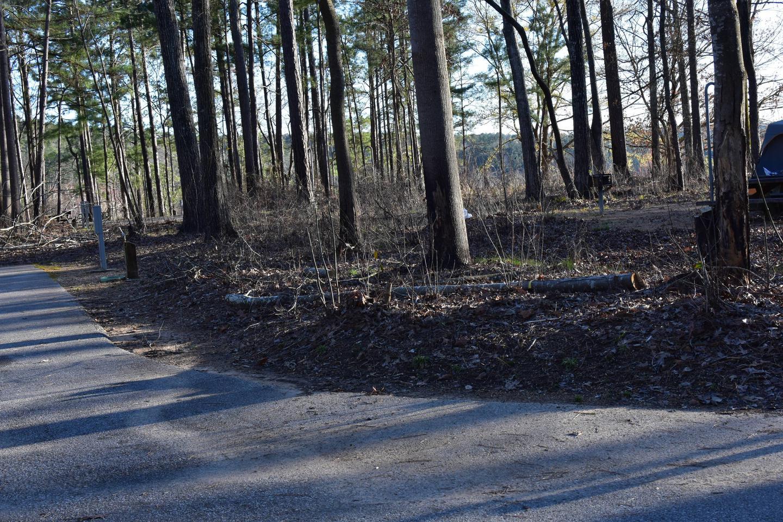 Fox Loop Site 30-2Fox Loop Site 30, March 6, 2020