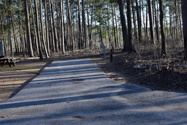 Fox Loop Site 30-1Fox Loop Site 30, March 6, 2020