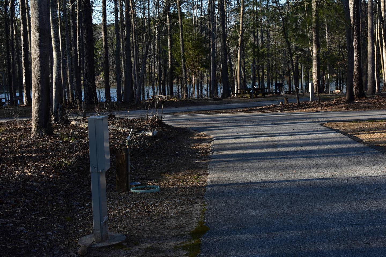 Fox Loop Site 30-3Fox Loop Site 30, March 6, 2020