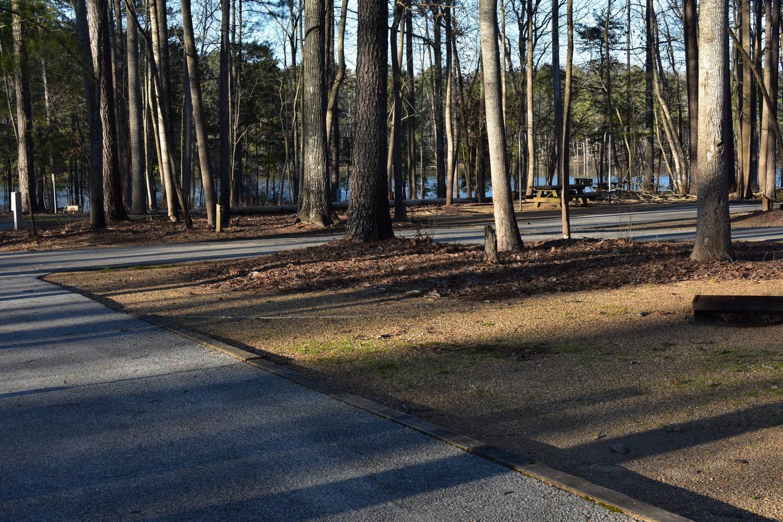 Fox Loop Site 30-4Fox Loop Site 30, March 6, 2020