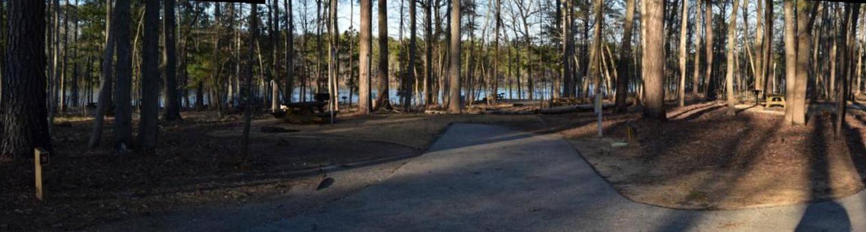Fox Loop Site 31Fox Loop Site 31, March 6, 2020