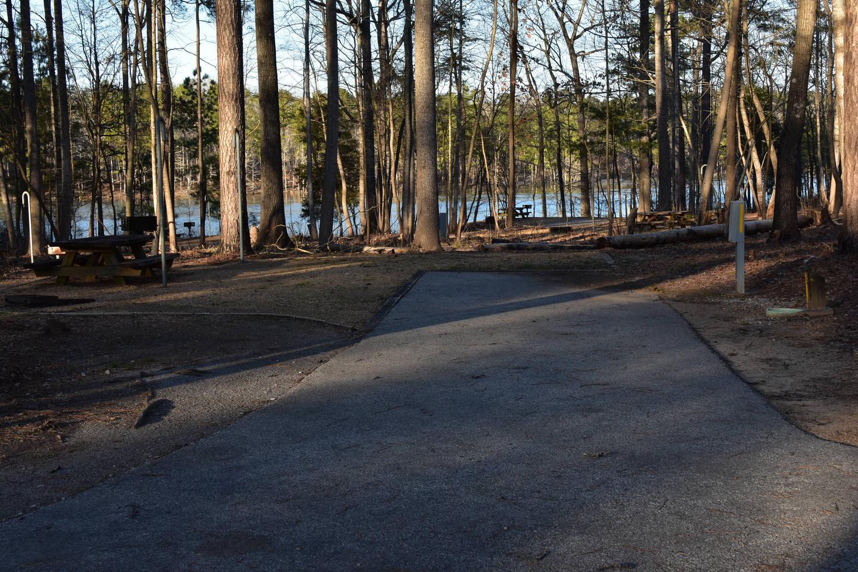 Fox Loop Site 31-1Fox Loop Site 31, March 6, 2020