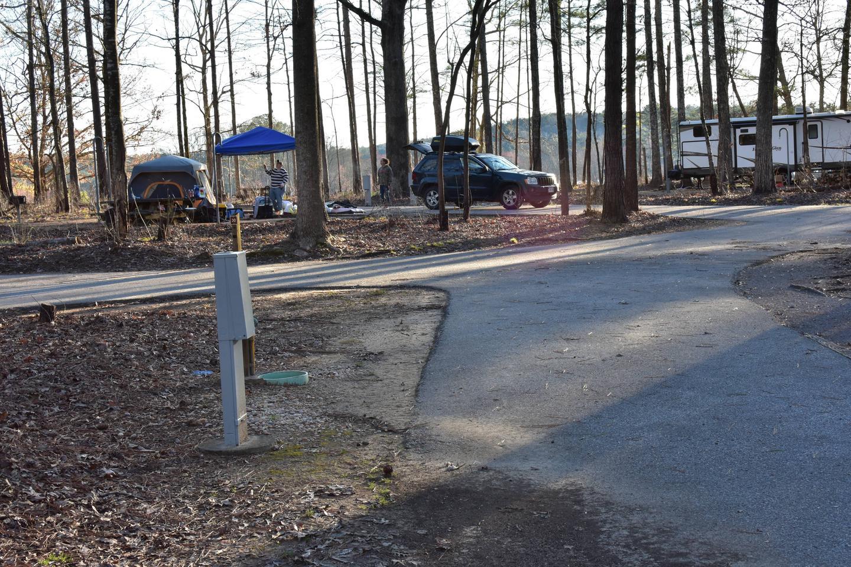 Fox Loop Site 31-3Fox Loop Site 31, March 6, 2020