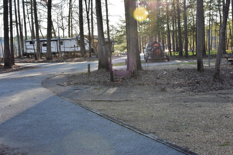 Fox Loop Site 31-4Fox Loop Site 31, March 6, 2020