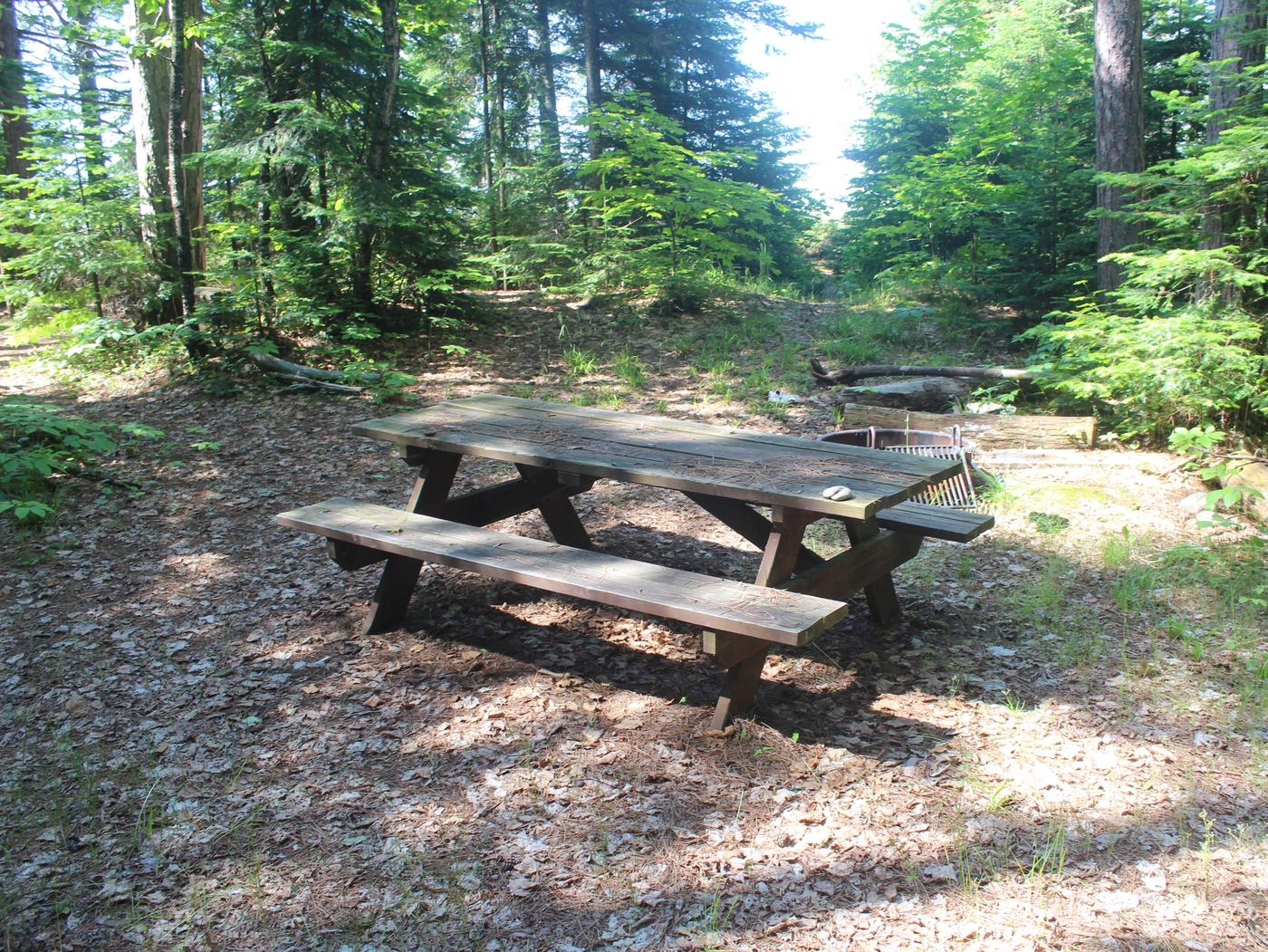 Michigan site 1 with picnic table and fire ringMichigan site 1