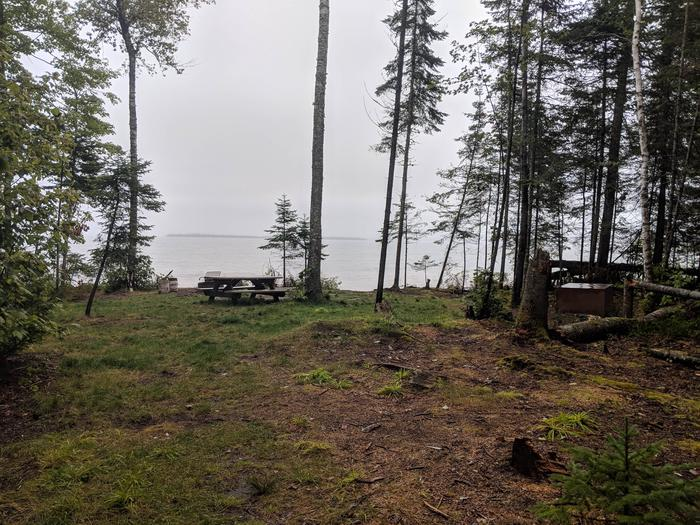 Sand site 2 with picnic table, fire ring, bear box, and lake viewSand site 2