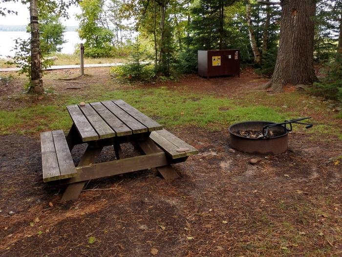 South Twin site 1 with picnic table, fire ring, bear box, and lake viewSouth Twin site 1