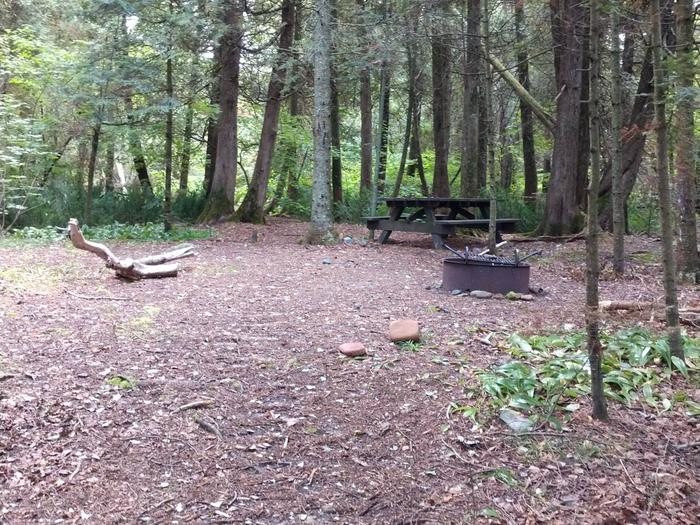 South Twin site 4 with picnic table and fire ringSouth Twin site 4