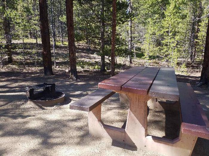 Father Dyer Campground, site 3, picnic table and fire ring
