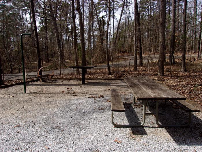 Rudds Creek CampgroundCampsite #19