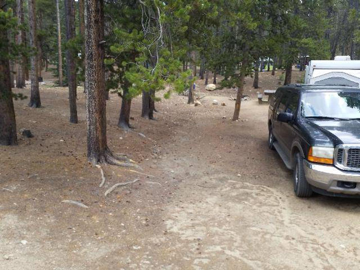 Baby Doe Campground, Site 5, vehicle
