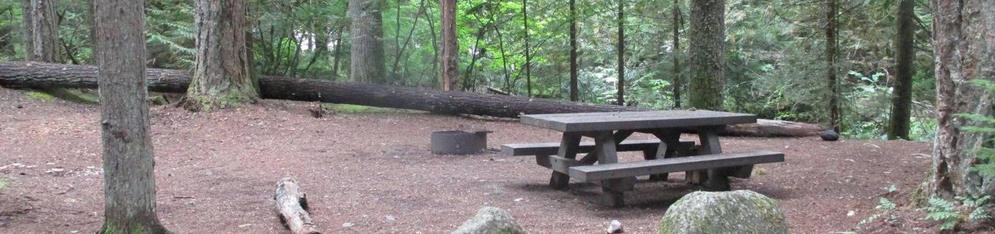 Silver Springs CampgroundSite 1