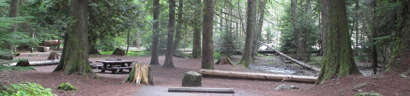 Silver Springs CampgroundSite 5