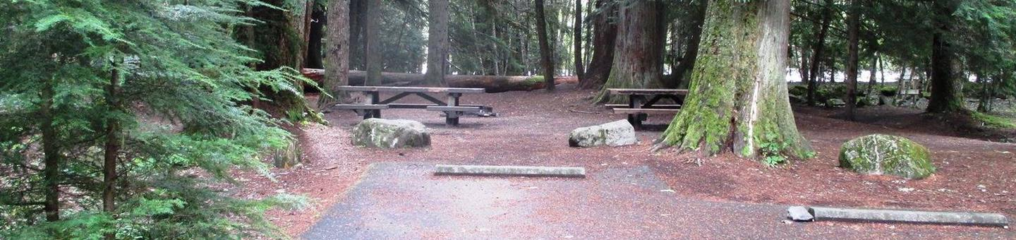 Silver Springs CampgroundSite 9