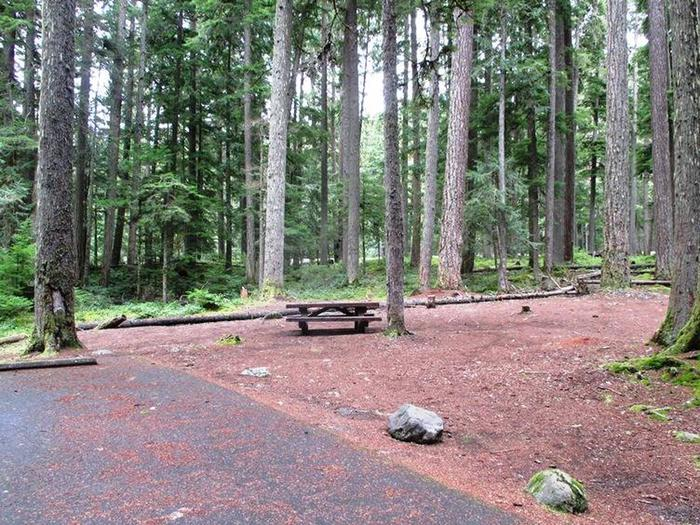 Silver Springs CampgroundSite 18