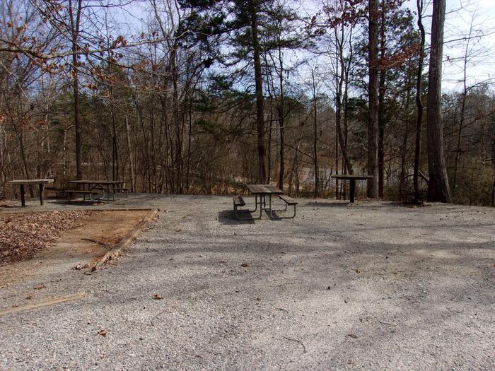 Rudds Creek CampgroundCampsite #37