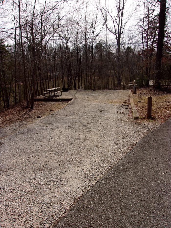 Rudds Creek CampgroundCampsite #43