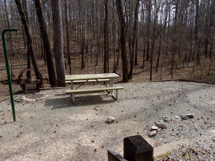 Rudds Creek CampgroundCampsite #50