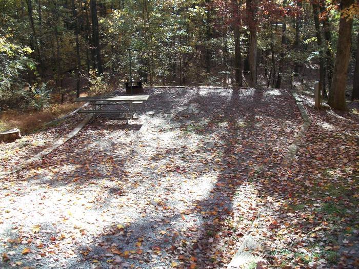 Rudds Creek CampgroundCampsite #51