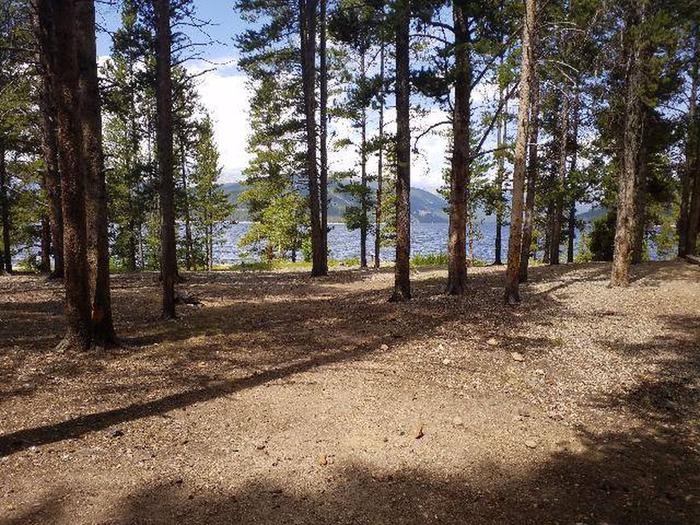 Baby Doe Campground, site 10 trees