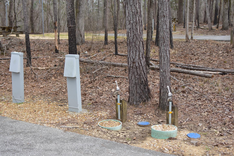 Bear Site 86-1Bear Site 86, March 1, 2020