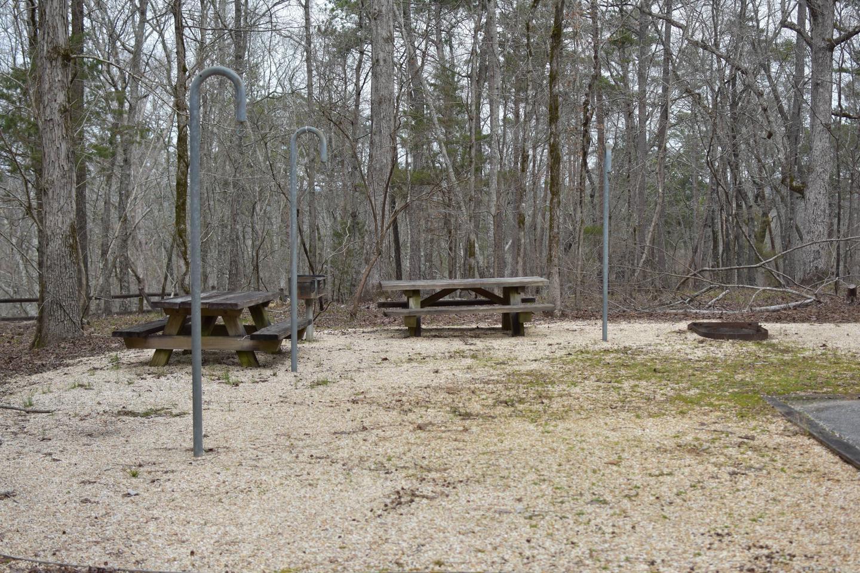 Bear Site 86-2Bear Site 86, March 1, 2020