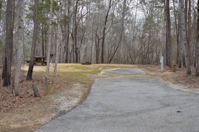 Bear Site 87Bear Site 87, March 1, 2020