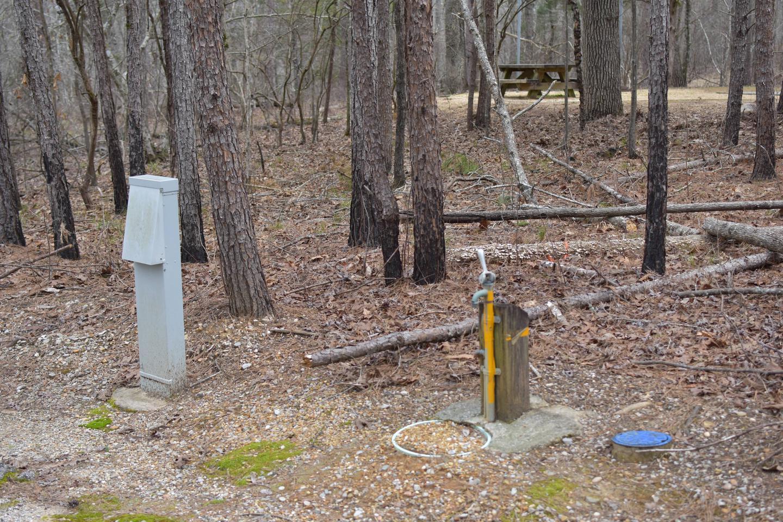 Bear Site 87-1Bear Site 87, March 1, 2020