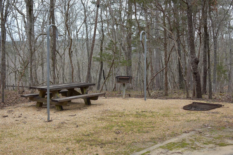 Bear Site 87-2Bear Site 87, March 1, 2020