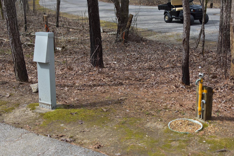Bear Site 88-1Bear Site 88, March 1, 2020