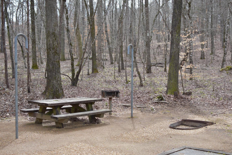 Bear Site 88-2Bear Site 88, March 1, 2020