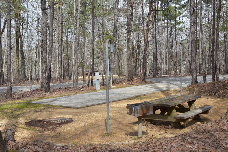 Bear Site 88-3Bear Site 88, March 1, 2020