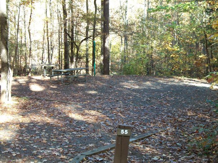 Rudds Creek CampgroundCampsite #55