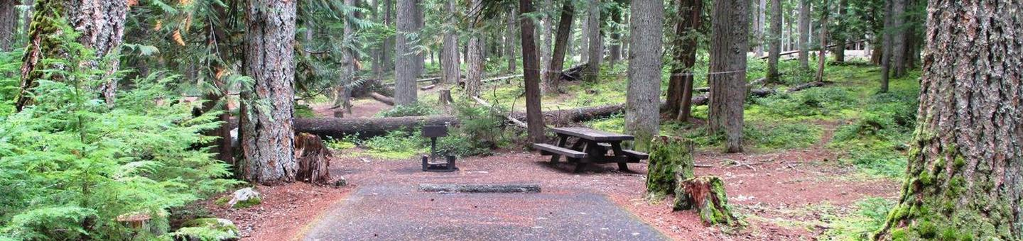 Silver Springs CampgroundSite 20