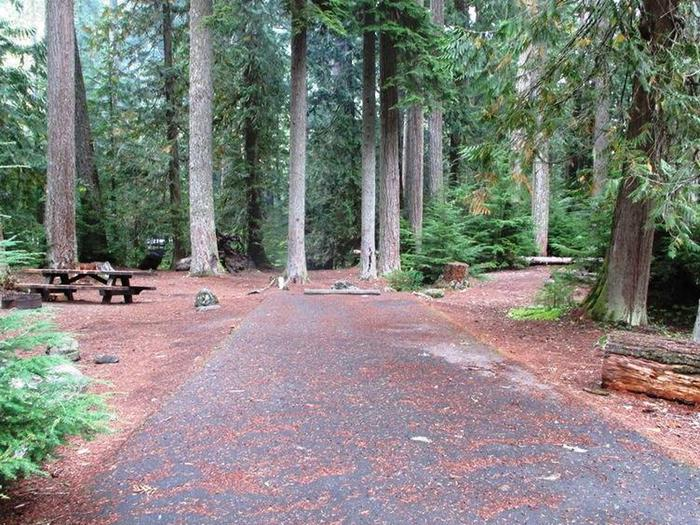 Silver Springs CampgroundSite 25