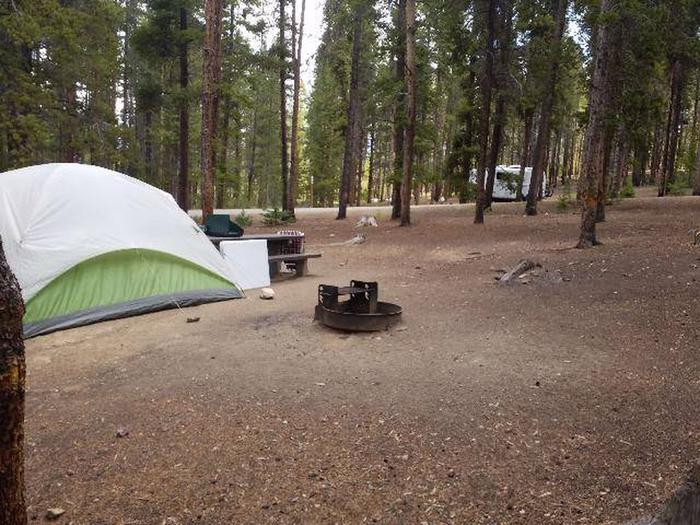 Baby Doe Campground, site 12, fire ring