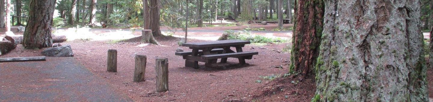 Silver Springs CampgroundSite 31