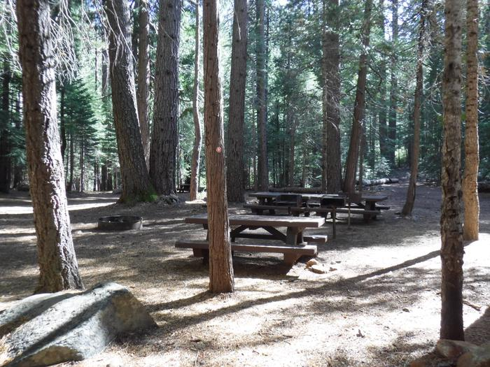 Picnic Tables and Campfire Ring