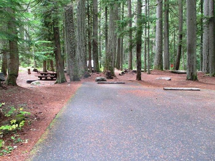 Silver Springs CampgroundSite 48